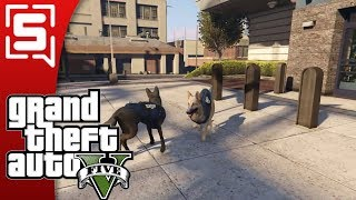 [Strippin] Grand Theft Auto V RP : Back to K9