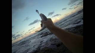 How I fish FINESSE off the rocks