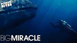 Big Miracle: Ice Diving (ft. Drew Barrymore, Rachel and John Krasinski, Adam)