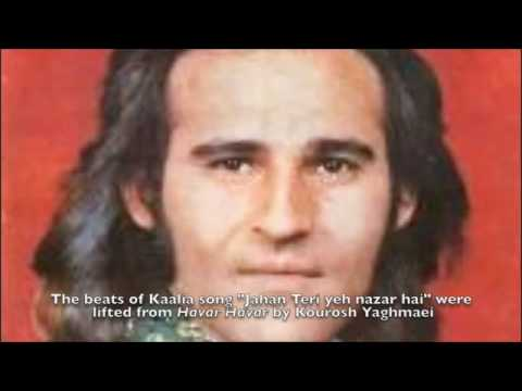 Jahan Teri Ye Nazar hai Kaalia | Zia Atabi : heleh Maali inspired...