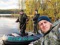 Подборка Приколов с Аркадием Цареградцевым
