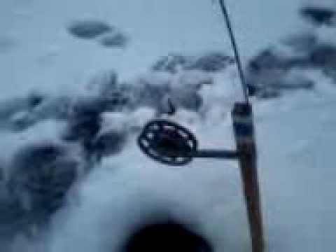 горе рыбак приколы