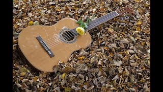 download lagu NhẠc ChẾ :nhac Sen Hay gratis