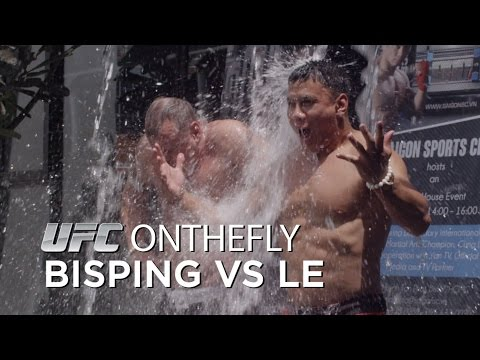 UFC on the Fly Bisping vs Le