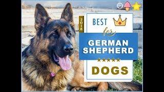 ZOOLAND - Funny German Shepherd !!!
