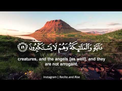 surah nahl  verse 48-50 by Saad Al Ghamdi
