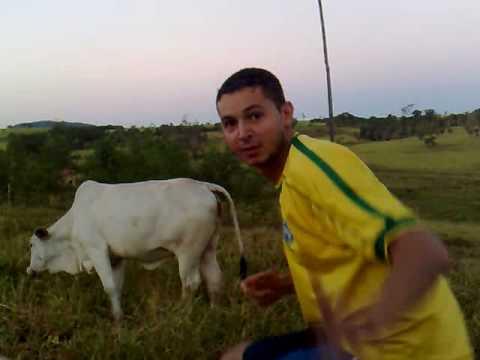 Comendo A Vaca - Sexo Com Animais video