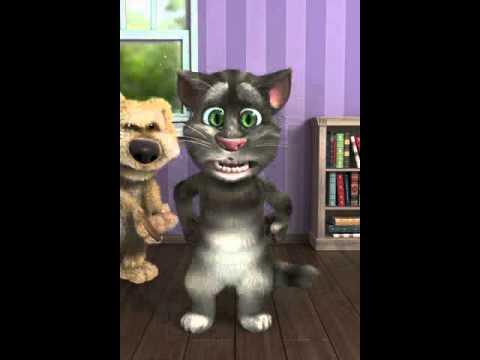 Tom: Il Gatto Uno Puoco Pazzerello