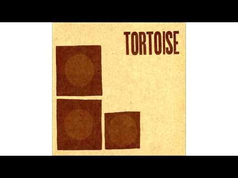 Tortoise - Spiderwebbed