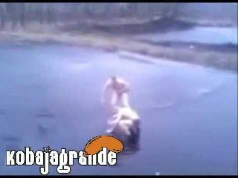 Ruska lasta   smesni video klipovi   klipovi za mobilne telefone   kobajagrande com