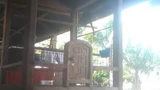 Andi Mas Petta Lawa (Mip Sudding) Bilbong sulawesi barat 085256359222