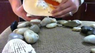 Pebbles and Shells (soft spoken sounds)