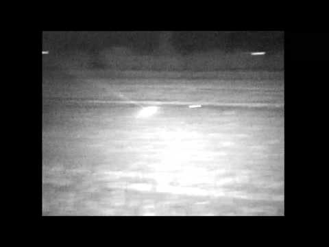 Fox with truck cam 120 yard