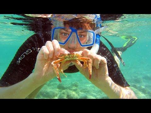 Snorkeling Boca Chica reef and mangroven island - Schnorcheln in Boca Chica