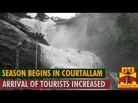 Season Begins in Courtallam : Arrival of Tourists Increased - Thanthi TV