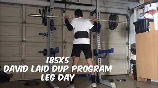 DAVID LAID DUP PROGRAM Leg Day