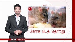 DID YOU KNOW? - by BBC Tamil world news