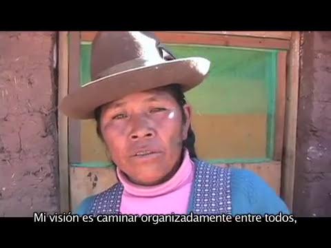 Criando cuyes en Simataucca, Video Apomipe Cusco