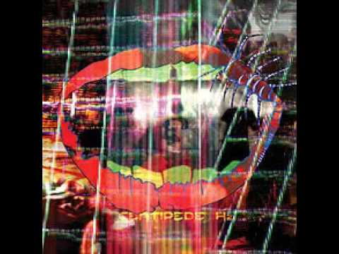 Animal Collective - Father Time