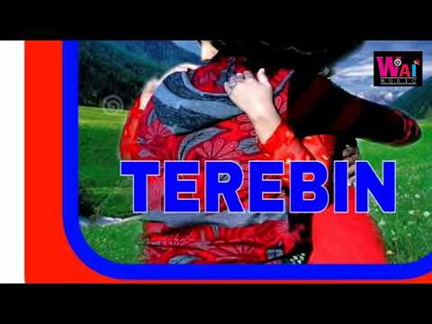 New Hindi song  Terebin ab jina Pau Ramiz khan super hit song 2018