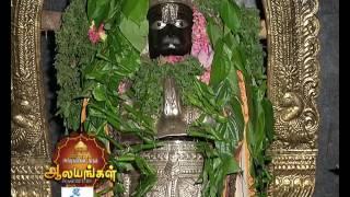 Arputham Tharum Alayangal - Episode 916 - March 25, 2017 - Best Scene