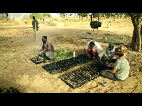Feed the Future - Food Security in Senegal with Peace Corps & USAID