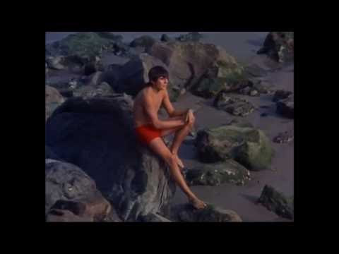 Monkees - A Man Without A Dream
