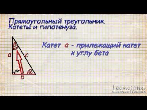 Что такое синус, косинус и тангенс угла в прямоугольном треугольнике. Часть 1