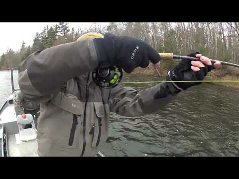 Muskegon River Steelhead Fishing in Michigan: flyfireguides.com