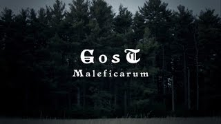 GosT -