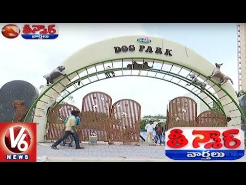 GHMC To Launch Dog Park In Kondapur, Hyderabad | Teenmaar News