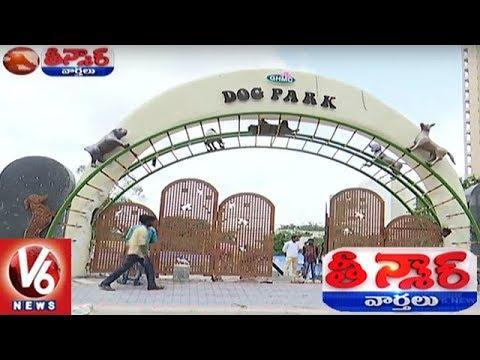 GHMC To Launch Dog Park In Kondapur, Hyderabad | Teenmaar News