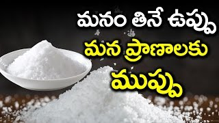OMG! SALT KILLS | Disadvantages of Having SALT | Health Safety Tips | Health Facts Telugu