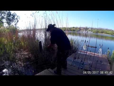 запорожье твоя рыбалка