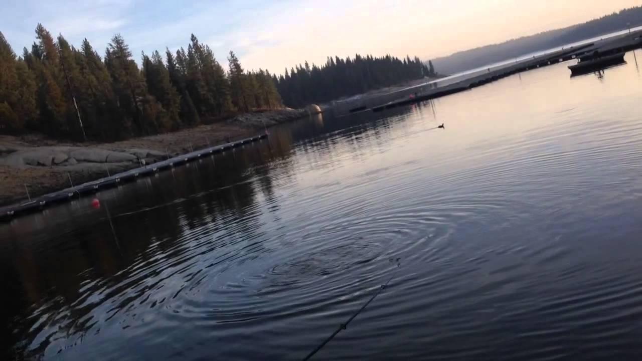 Shaver lake fishing youtube for Shaver lake fishing report