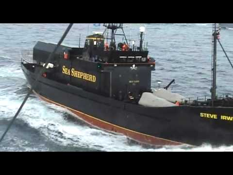 2009 02 06 Sea Shepherd TERRORISM ATTACKS against Japan Whaling Vessels