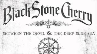 Watch Black Stone Cherry Wont Let Go video