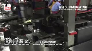Automatic vacuum packing machine Kimchi industry in Korea