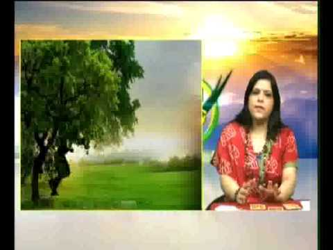 Tarot Card Reading Programme Monica Agrawal On Haryana News 24 Nov 2014