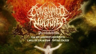 CONSUMED BY VULTURES - CANTO VII. ENCAUSTUM - PAPYRUS EXCELSI [OFFICIAL LYRIC VIDEO] (2019) SW EXCL