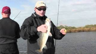 Speckled Trout Action On Bayou Dularge