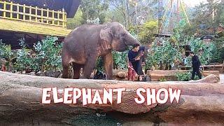 download lagu Elephant Show Taman Safari Indonesia - Pentas Gajah gratis