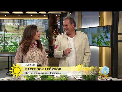 """Steffo: """"Jag ser till att ljuga rätt mycket på sociala medier"""" - Nyhetsmorgon (TV4)"""