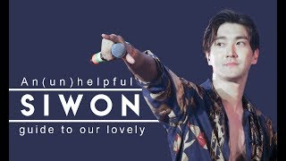 An (un)helpful guide to Choi Siwon
