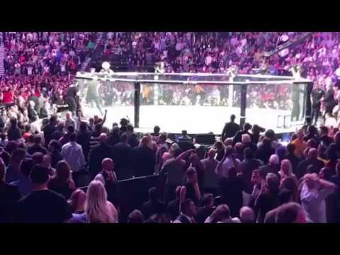 UFC 229 McGregor Khabib SCARY BRAWL, ALL ANGLES Crowd/Octagon