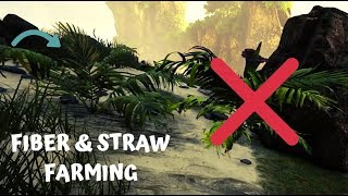 Fiber & Straw - How to efficiently farm Fiber/Straw [Atlas]