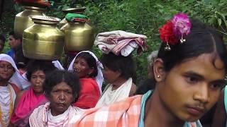 Niyamgiri Dongrias : When Cuckoos Stopped Singing