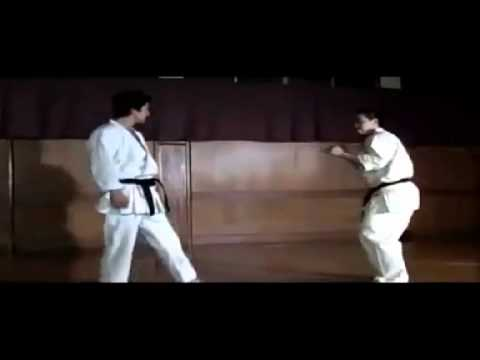 Karate Shotokan Storm video
