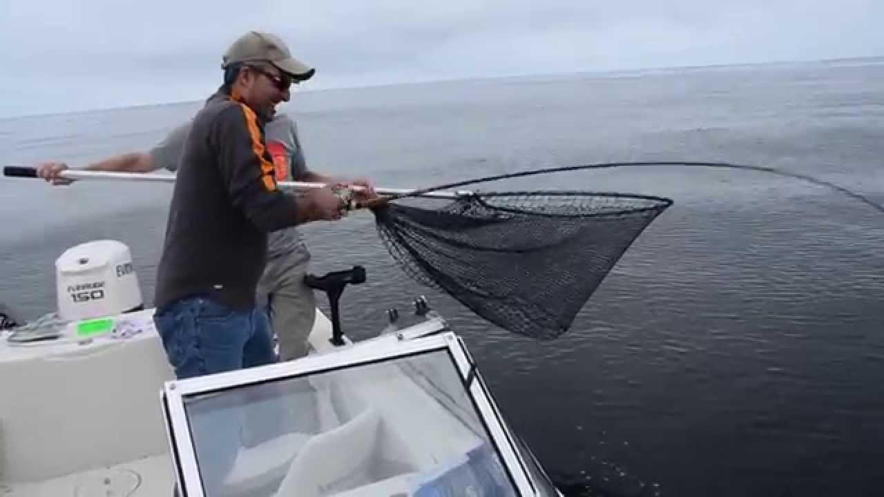 Coho salmon fishing and catching off oregon coast nehalem for Salmon fishing season oregon