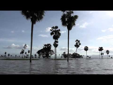 Keindahan Alam Obyek Wisata Danau Tempe Wajo